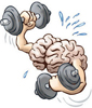 Cerebro-Pesas