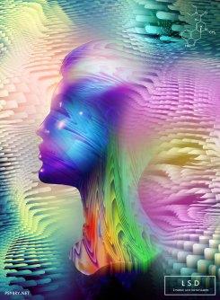 19/20 - LSD